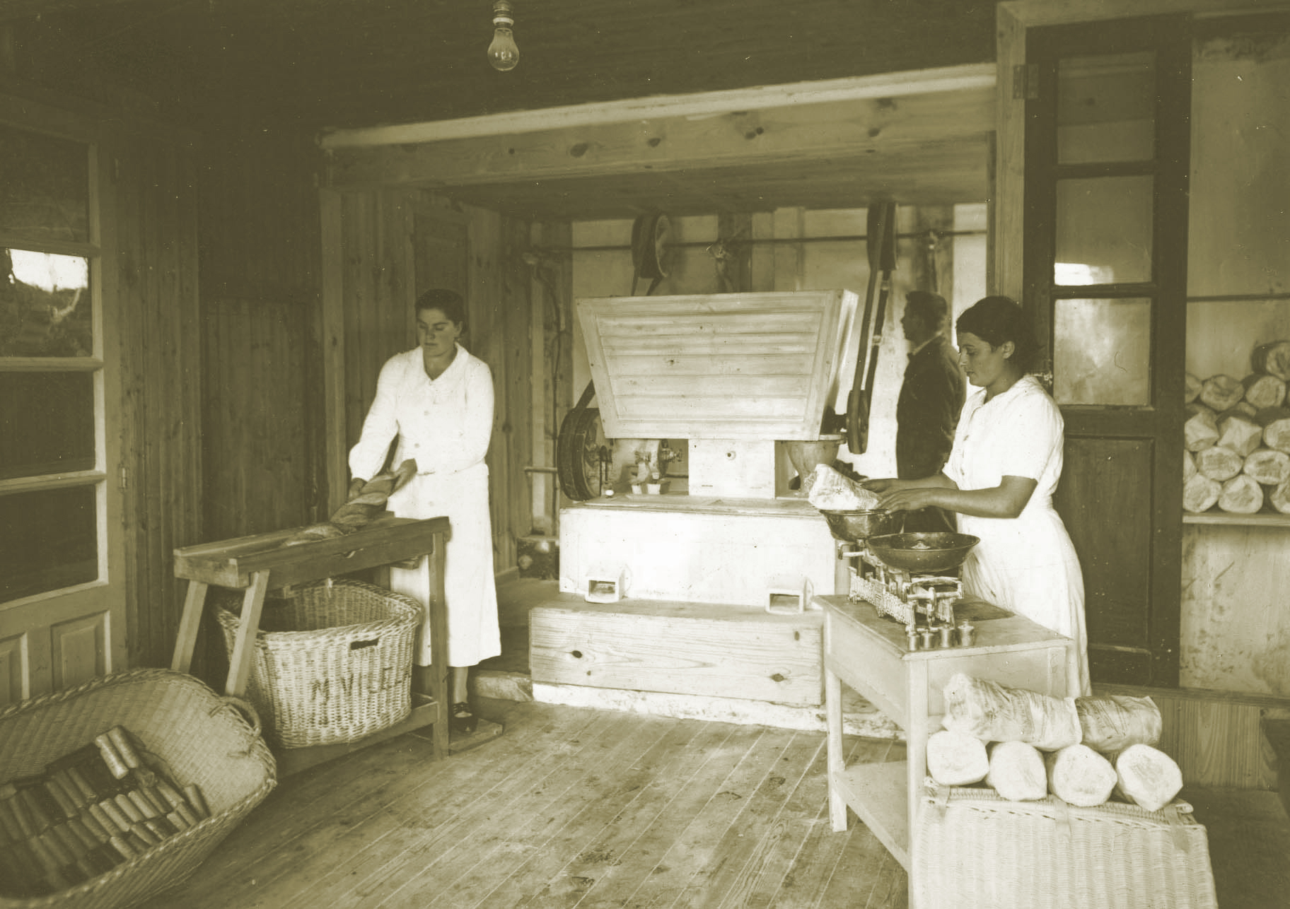 foto antigua panaderia